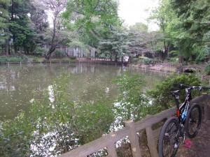 神田川の水源