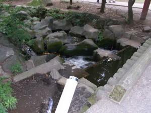 川の始まり?
