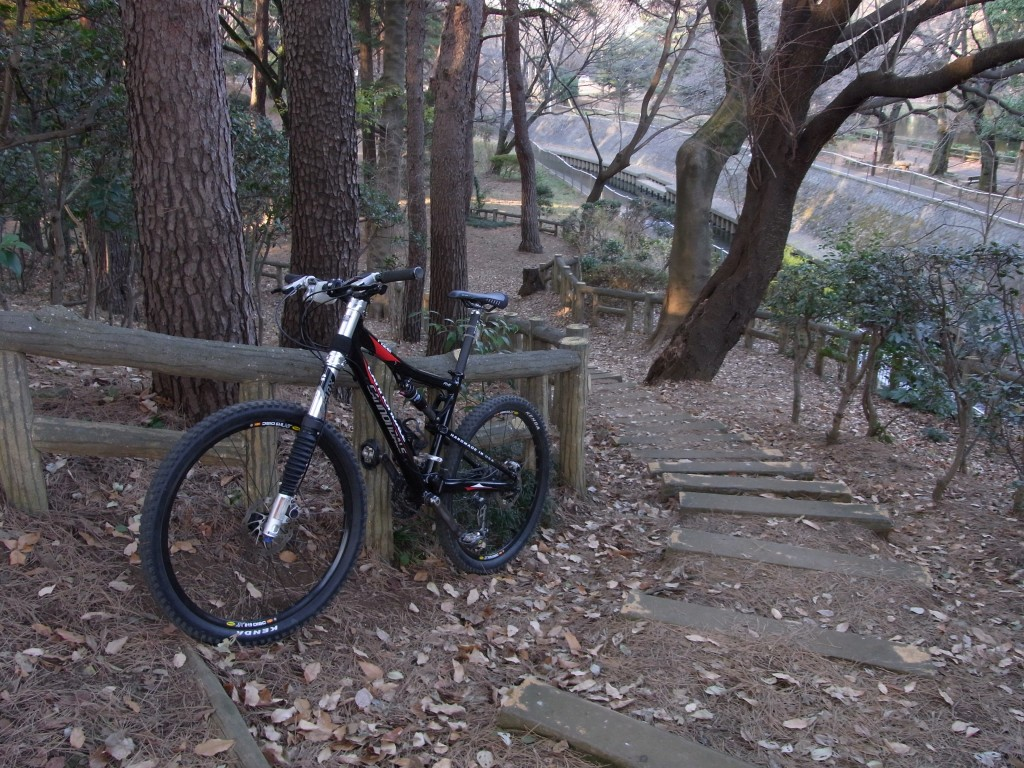 Cannondale Rize号で階段下り