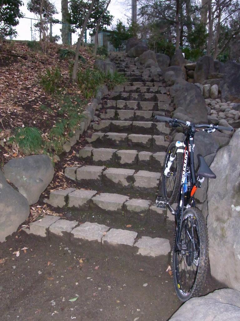 前回Chase号では下りなかった階段