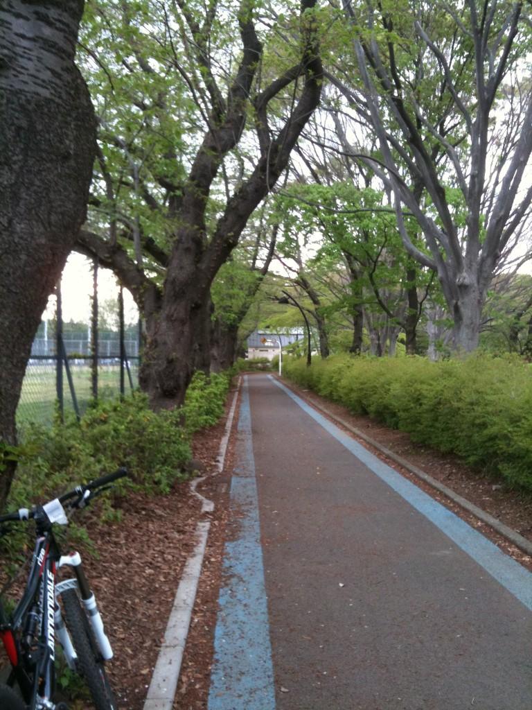 懐かしいCannondale Rize号。駒沢オリンピック公園のサイクリングコースにて