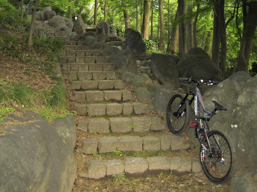 Rize号ではちょっと怖かった階段