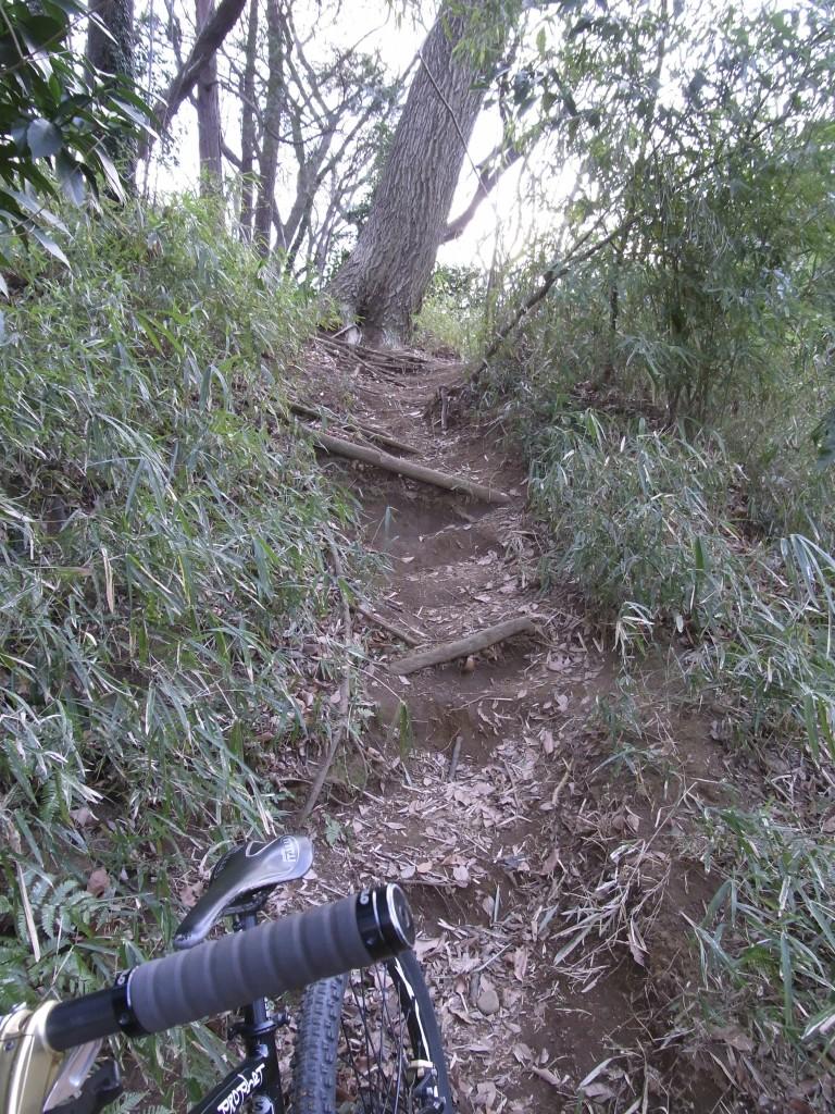 仮想登山道