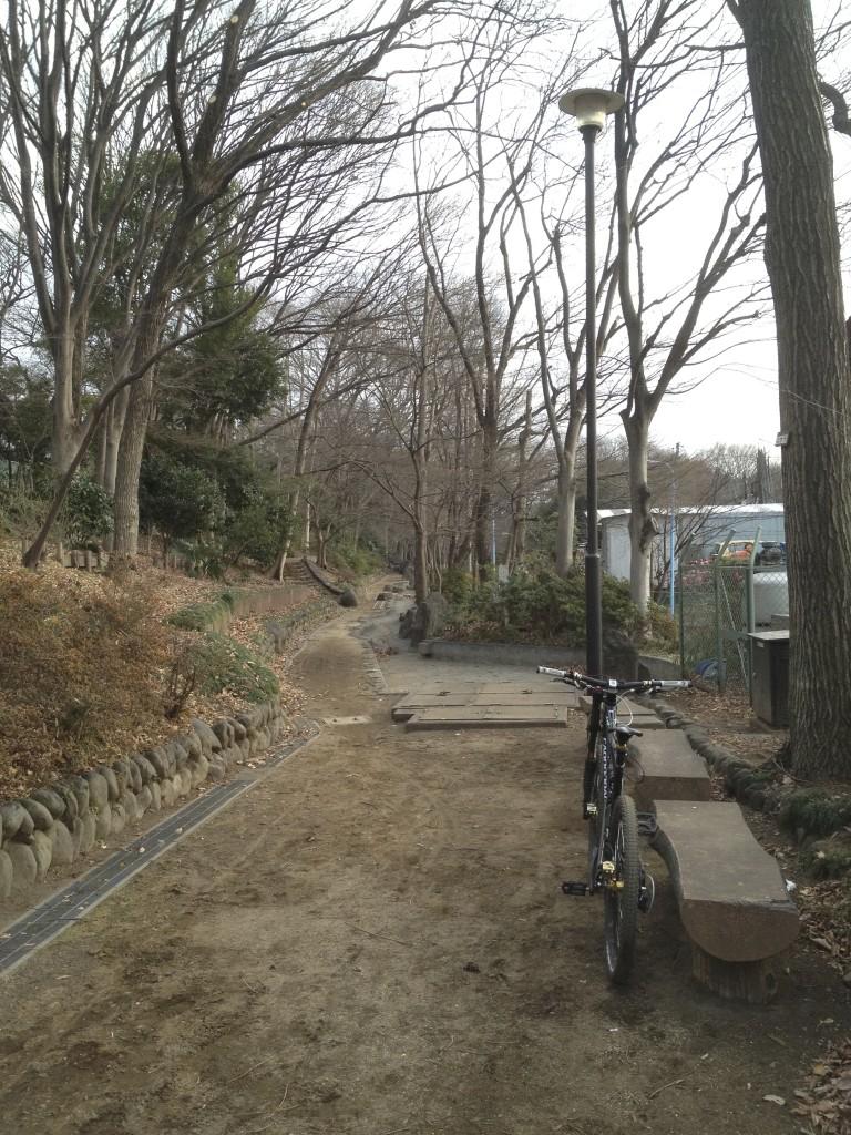 反対側の公園
