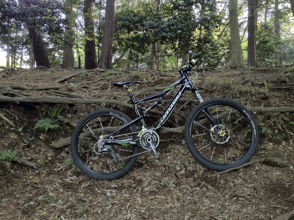 Cannondale Rize(RZ) One Forty