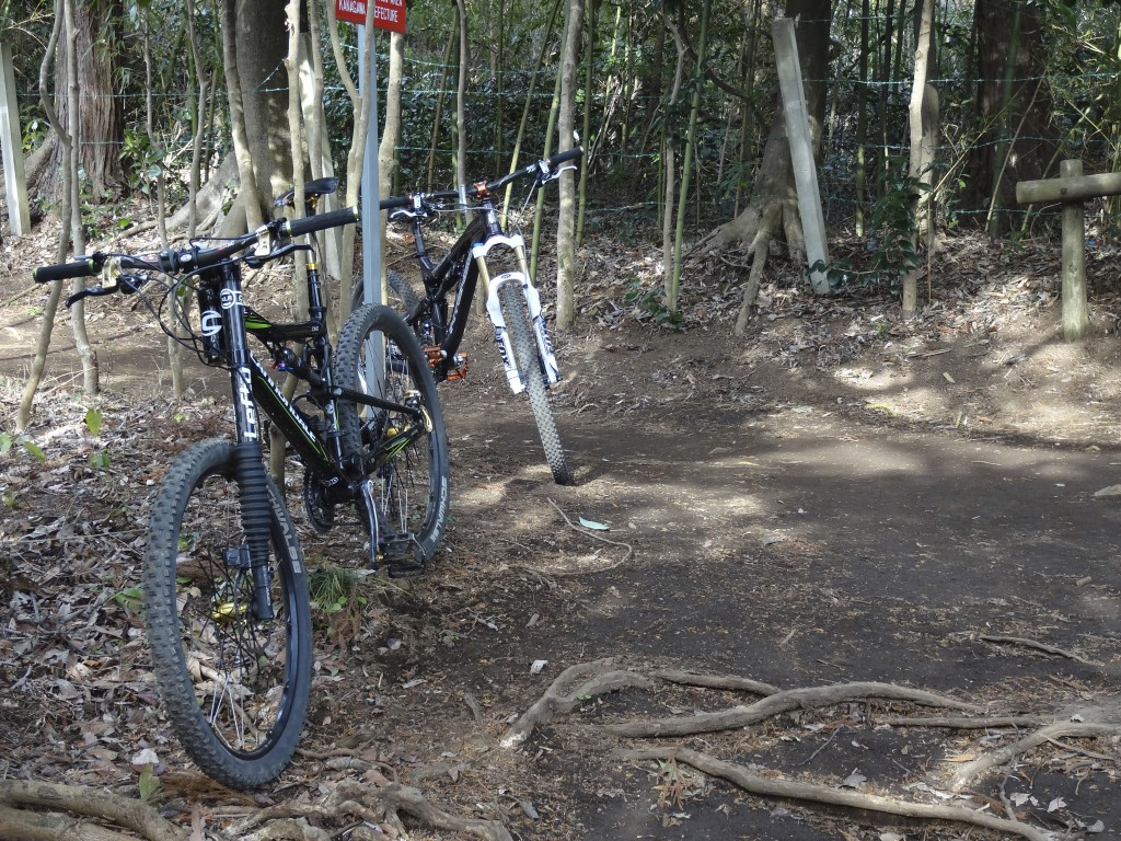 Intense Tracer2 & Cannondale Rize