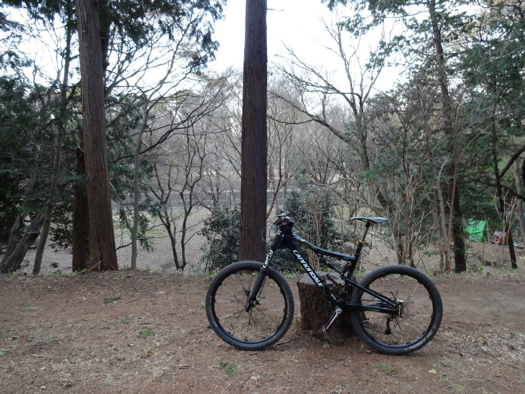 cannondale rize 140の復権