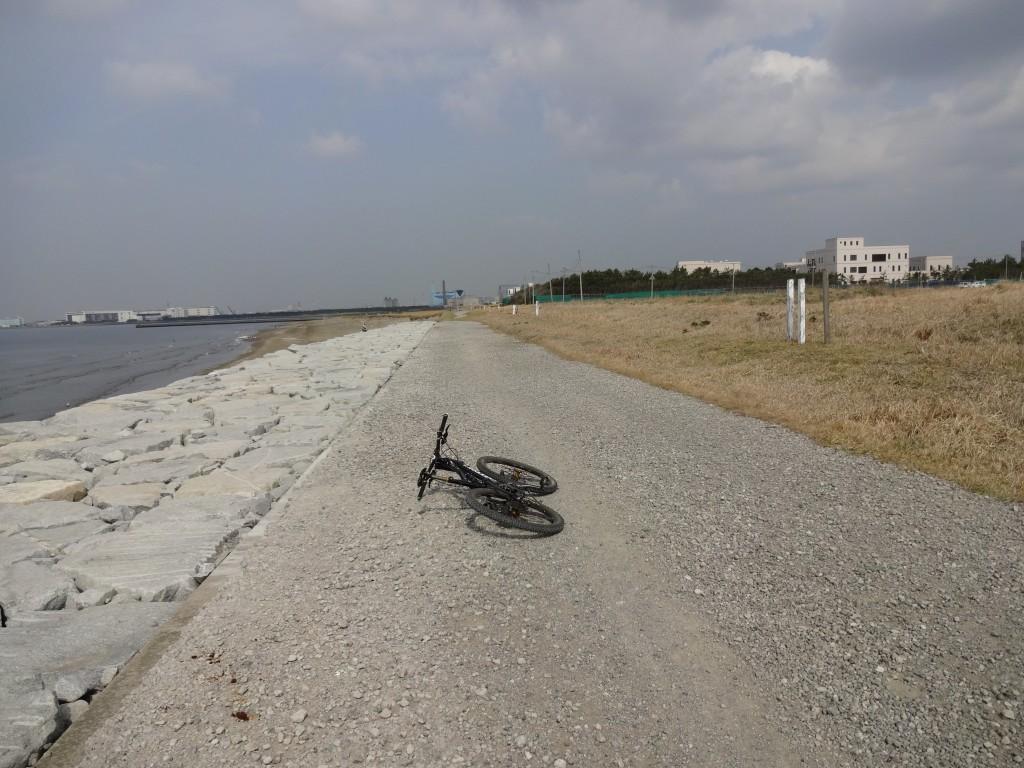 公園と海の間には長いフラットダート