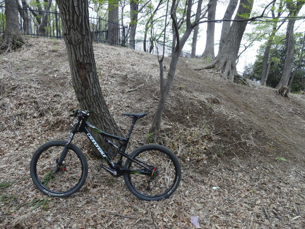 cannondale rizeでSB山