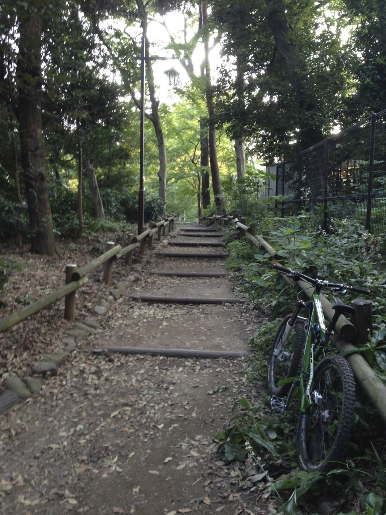 前回Rizeで登った坂