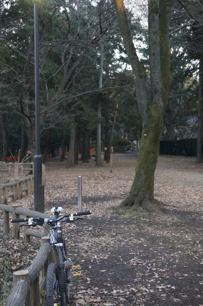 左奥のオレンジのネットが張られているのがMTBの練習をしていた場所です