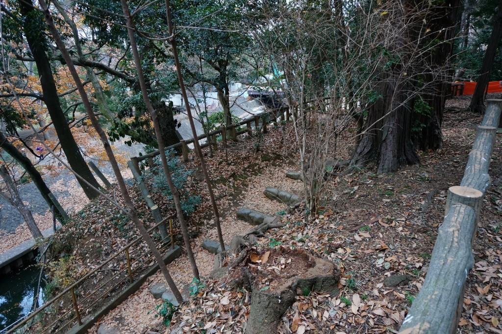 この石段の下りで、Prophet Sサイズの44Tチェーンリング、よく削ってましたねぇ…