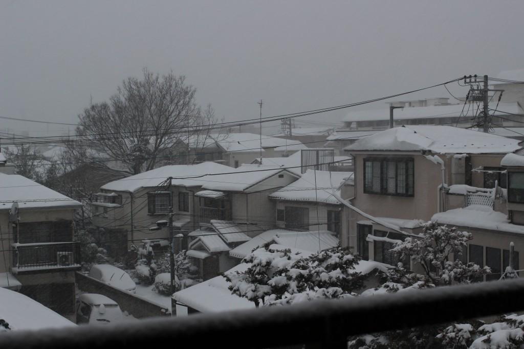 子供目線の雪景色(次男撮影)