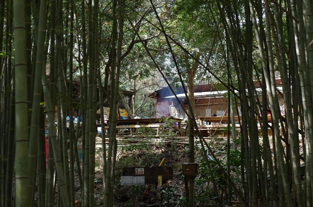 後半部分。森の茶屋。K-30で撮影。