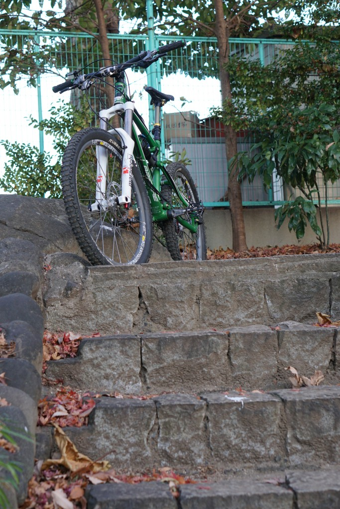 この階段は裏山より緊張する…