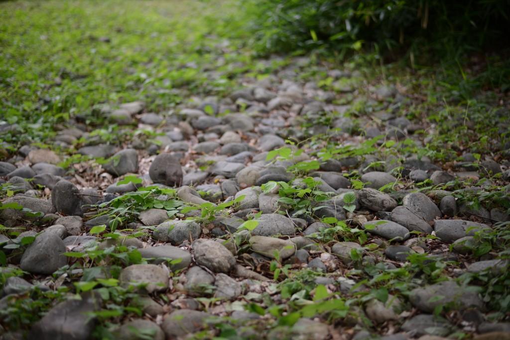 石だらけの路面