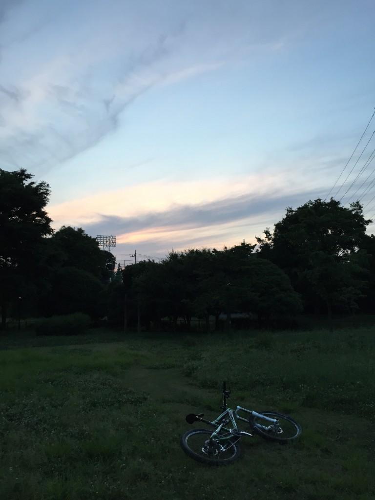 武蔵野園さんまでは行き着かなかったけど