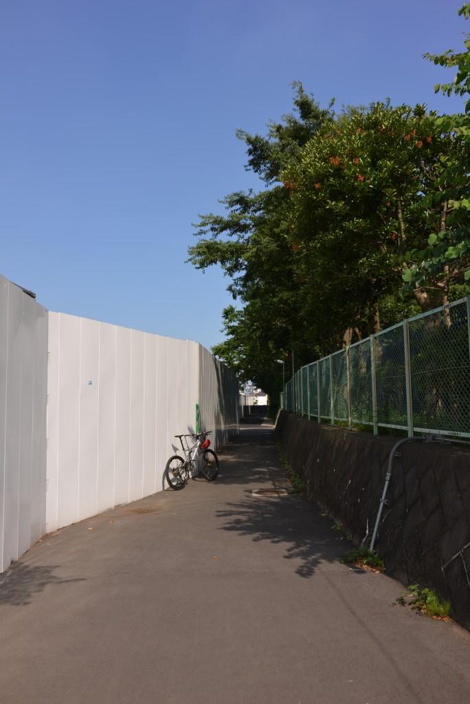 遊歩道の片側が開通