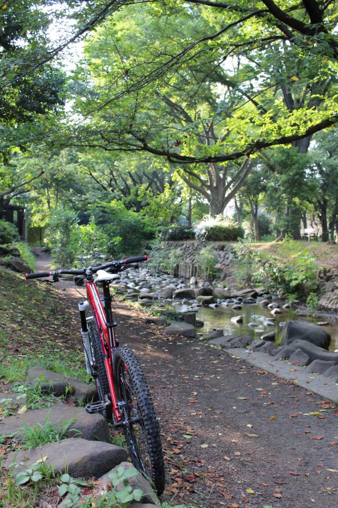 神田川上流