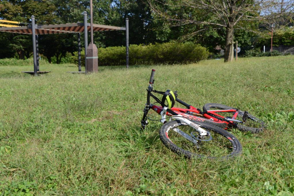 昨年次男とホウジャクやオオスカシバを撮った公園