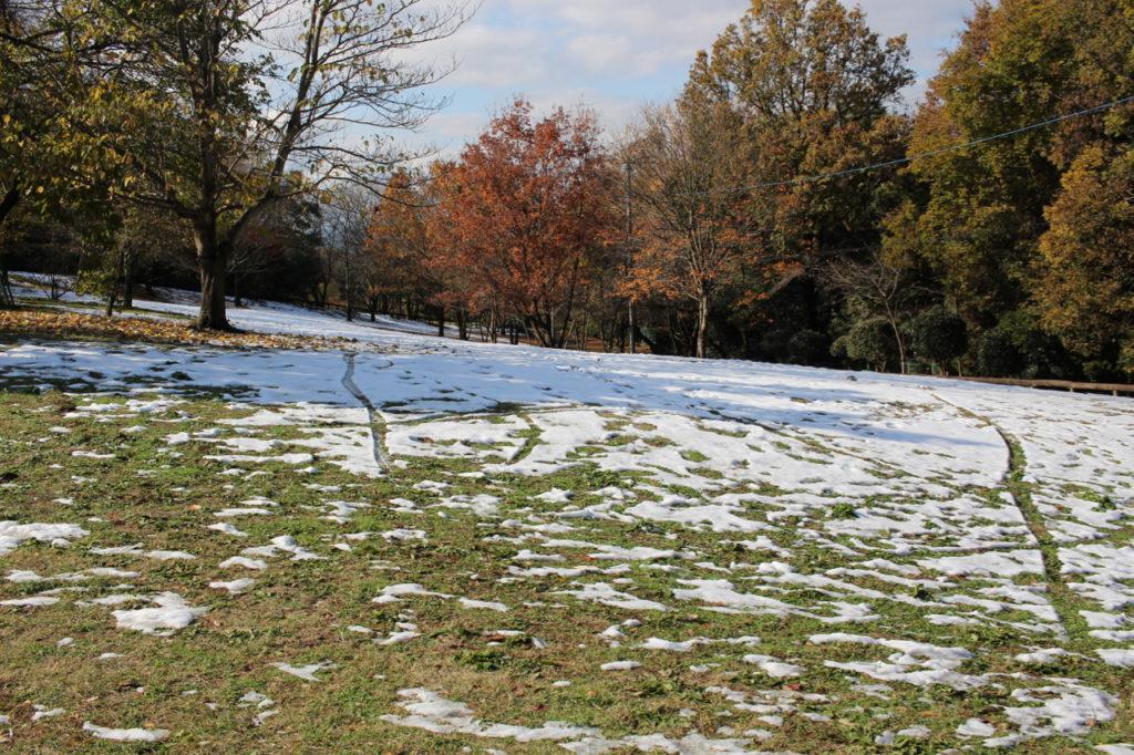 山頂付近の積雪