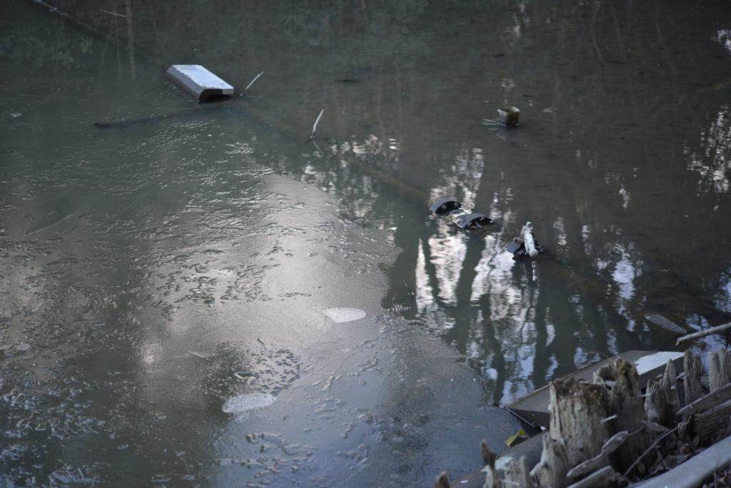 ドブ池も凍る…