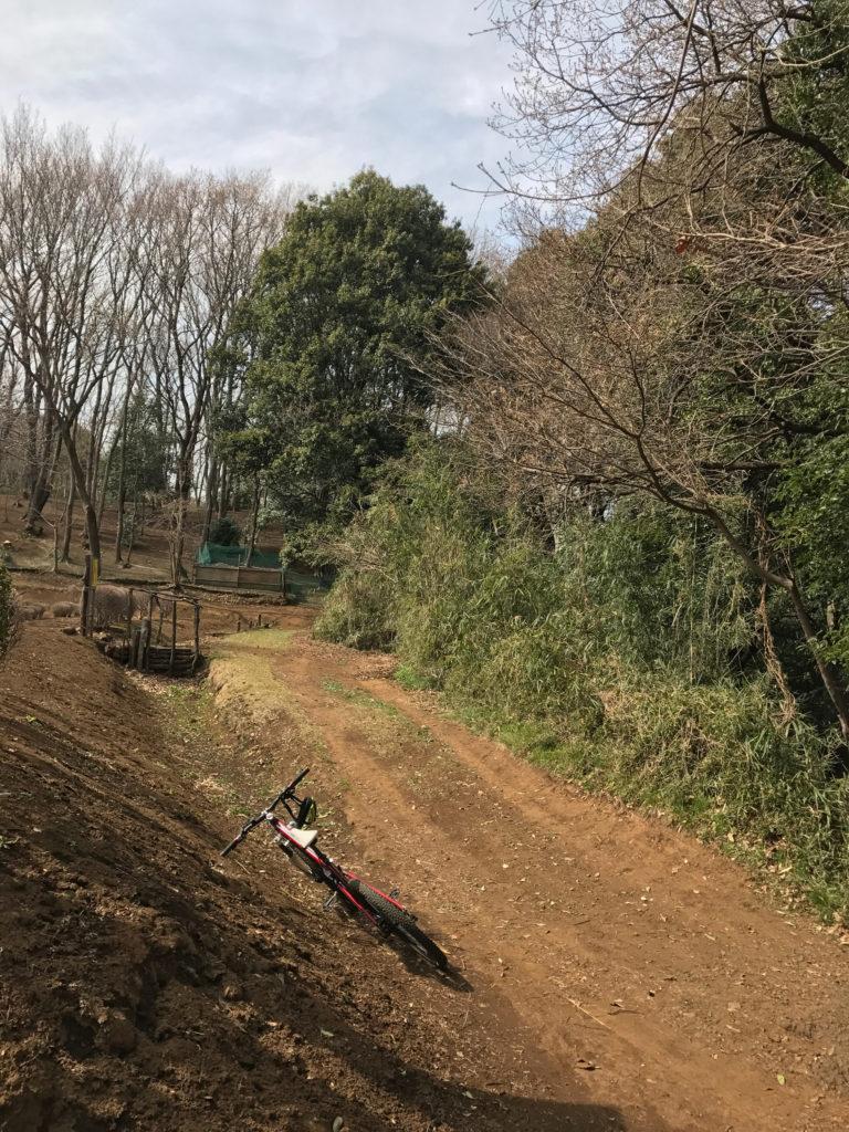 M山トレイル