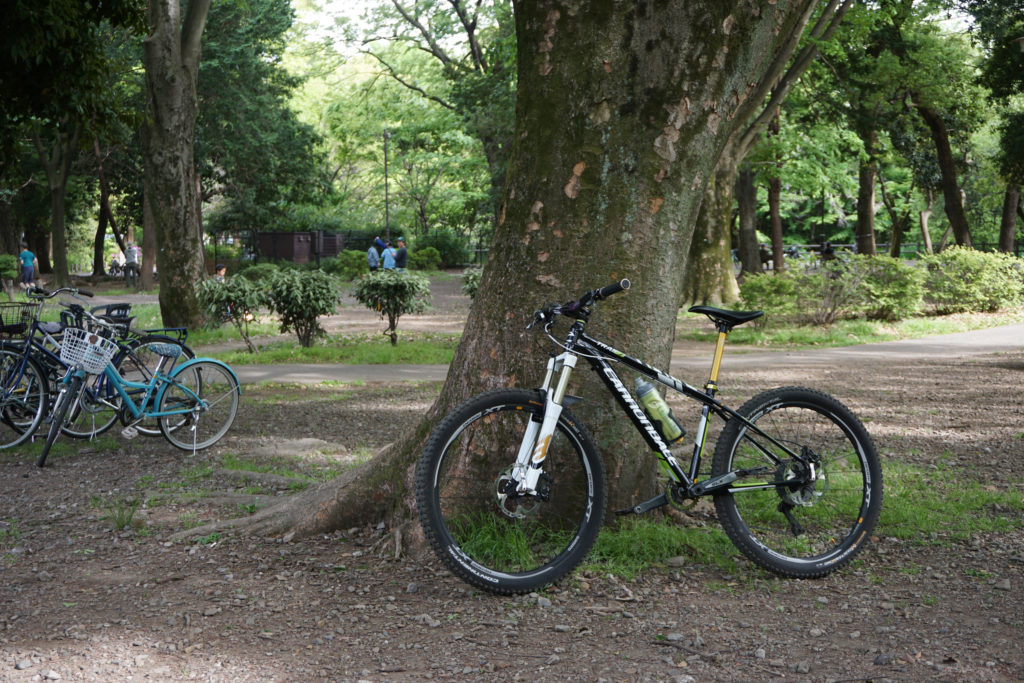 久々のCannondale Trail 7号