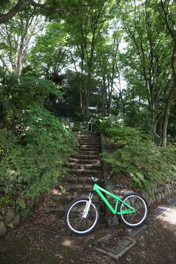最初は段差小さめの階段でウォーミングアップ