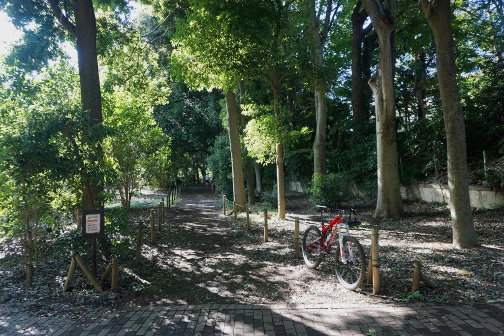 終点の井の頭公園内も軽く散策