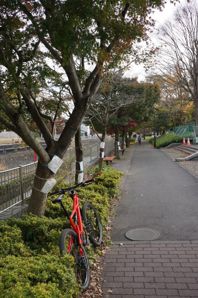 河岸の遊歩道