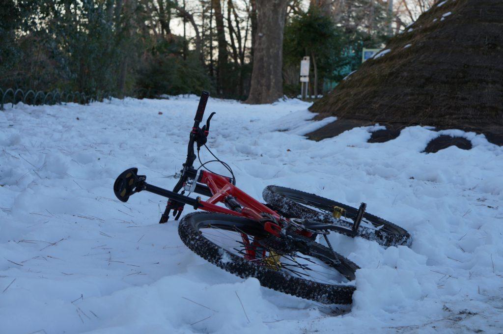 遺跡のところはまだ雪が深い
