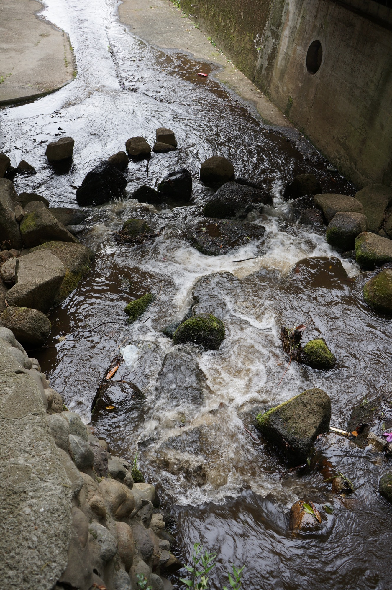 下ノ池の水が川に流れ込む