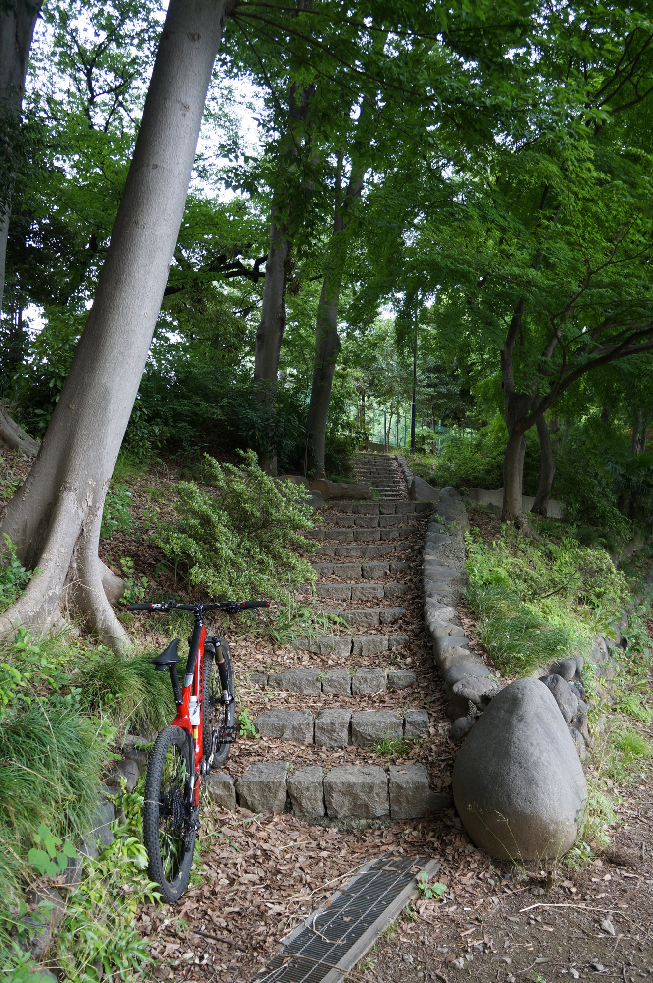 バイクコントロールが難しい階段