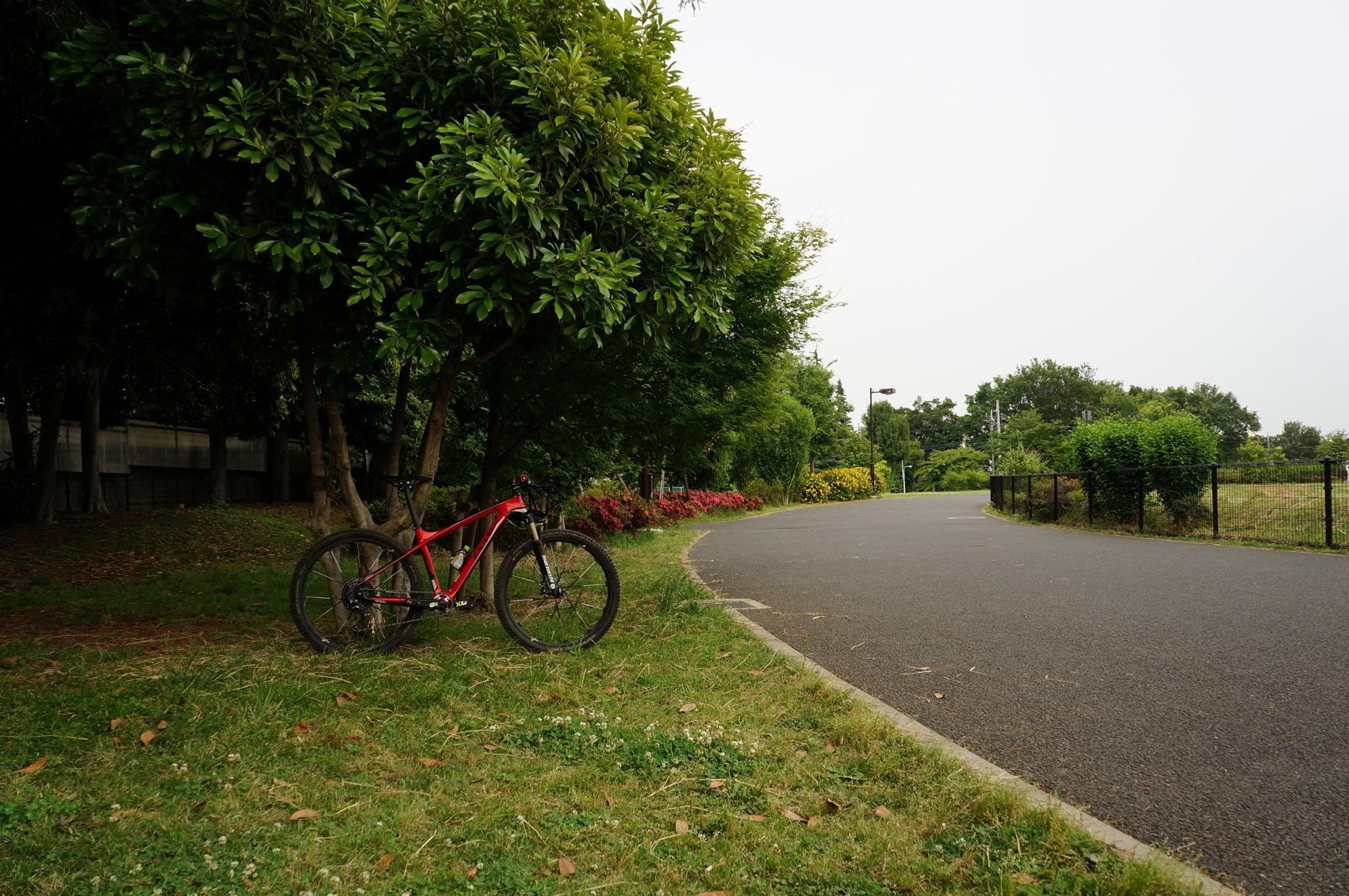 最後に経由した公園