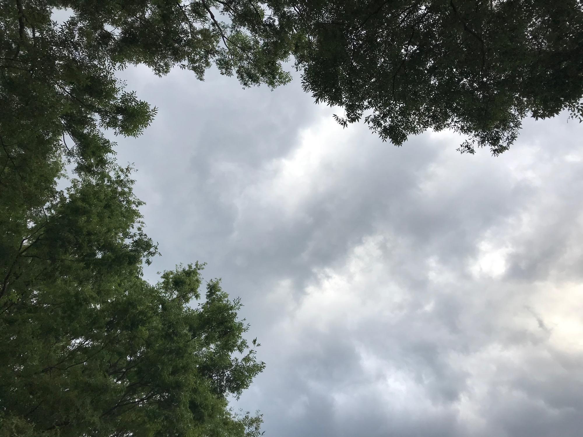 天候が怪しくなってきた