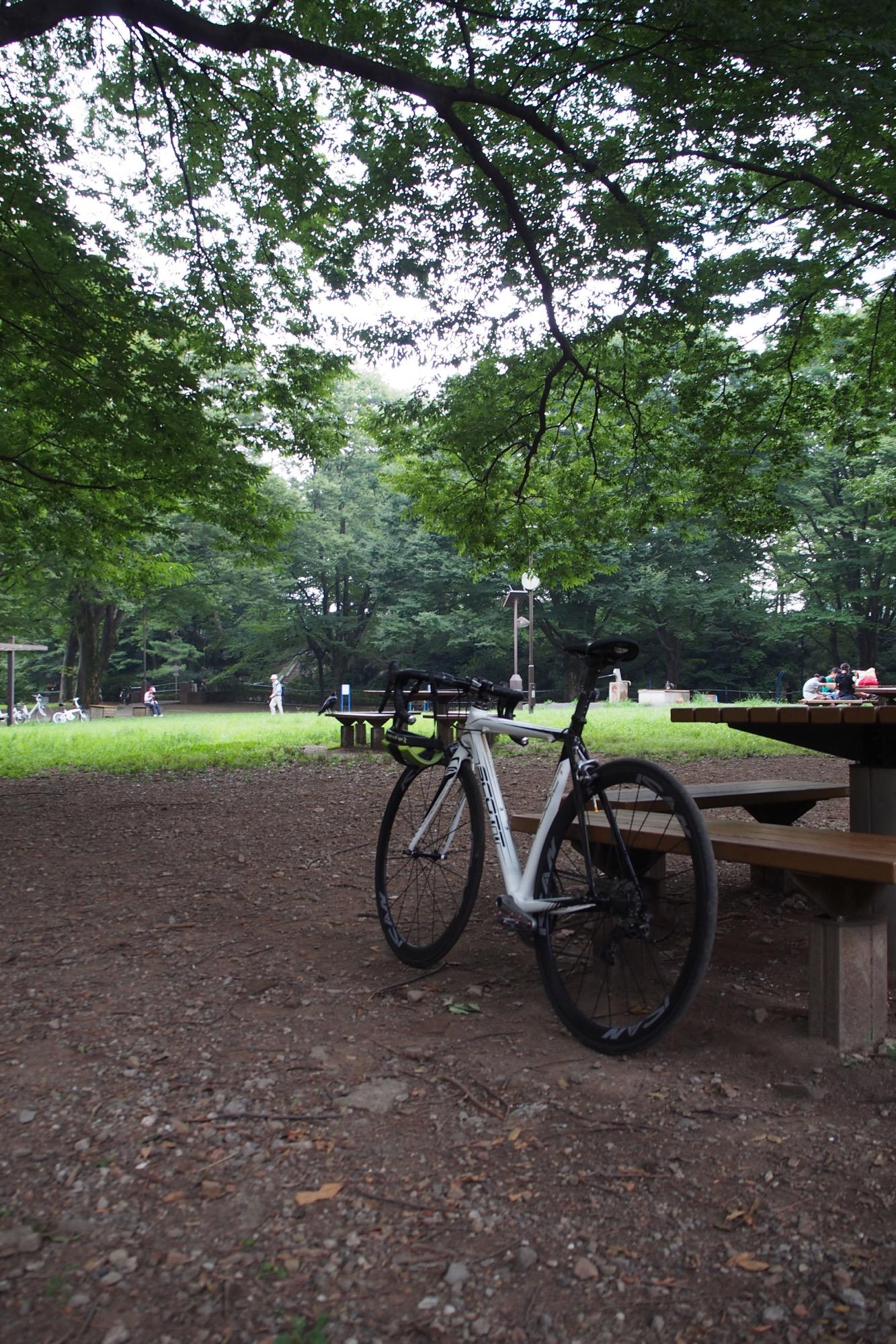 暑すぎるせいか、公園も人が多くなかったです