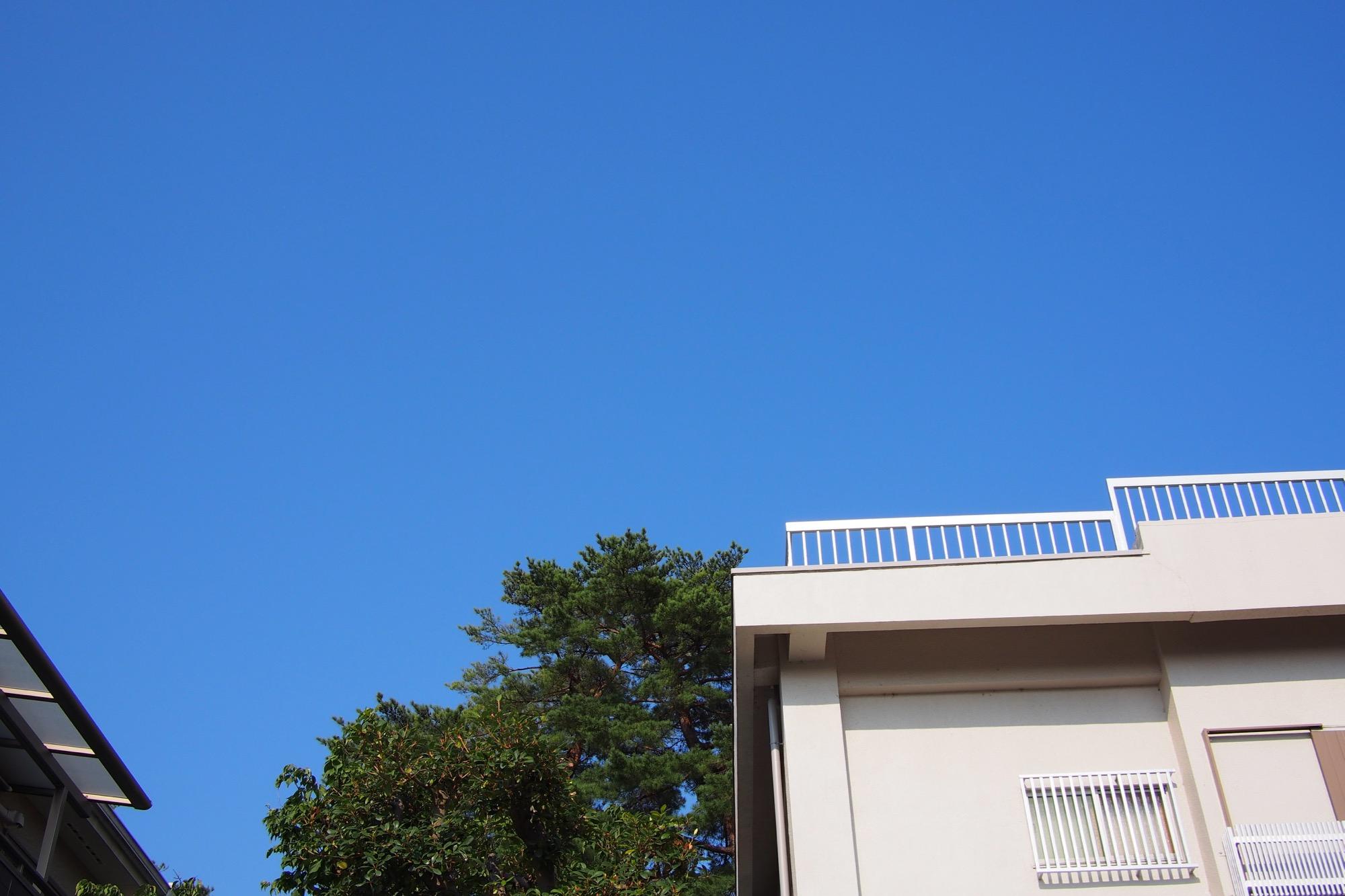 暑いけど青空は気持ちいい