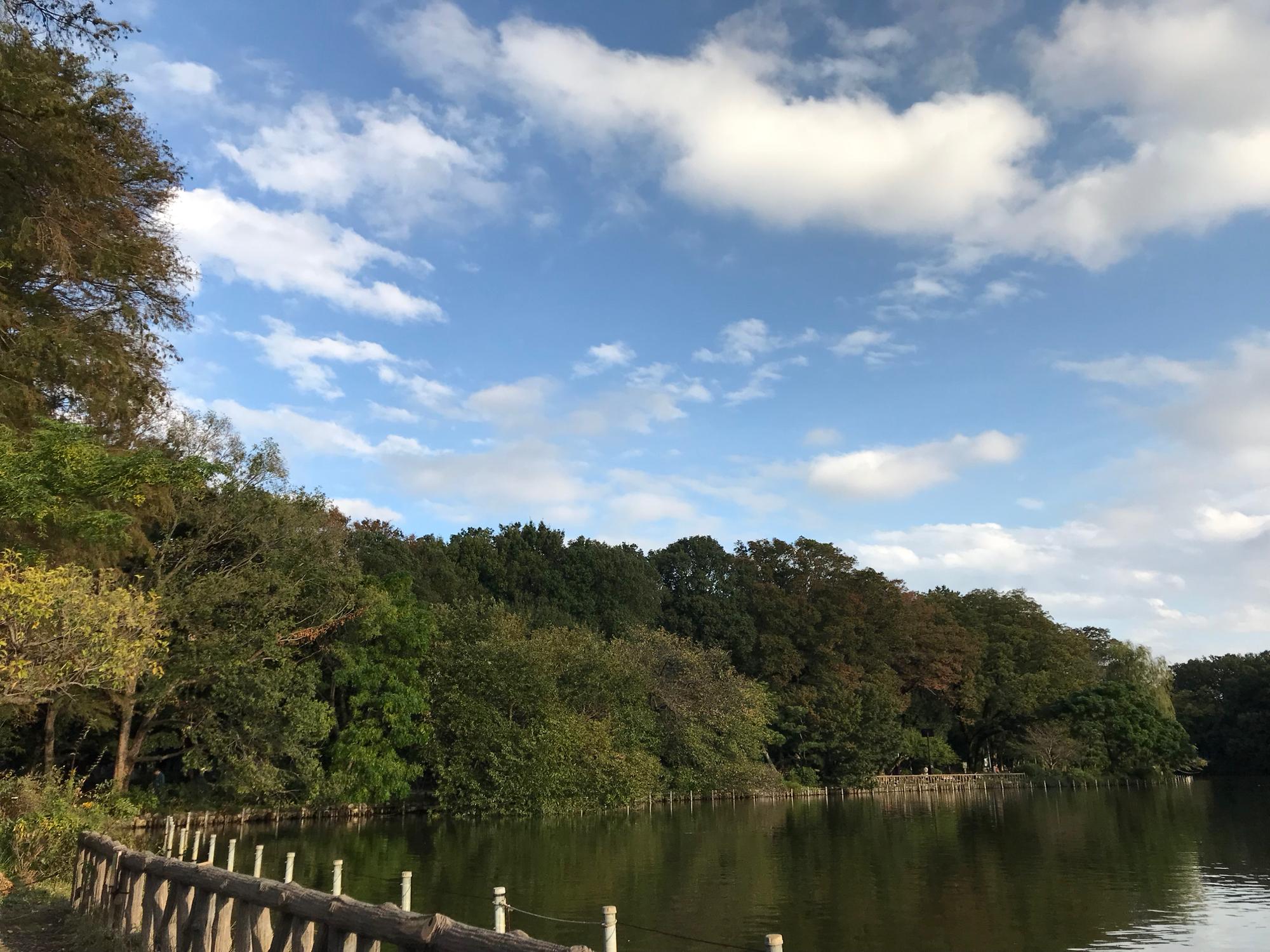 まず、善福寺公園