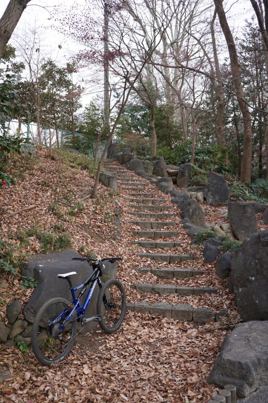 Nemesisでは下りられない階段