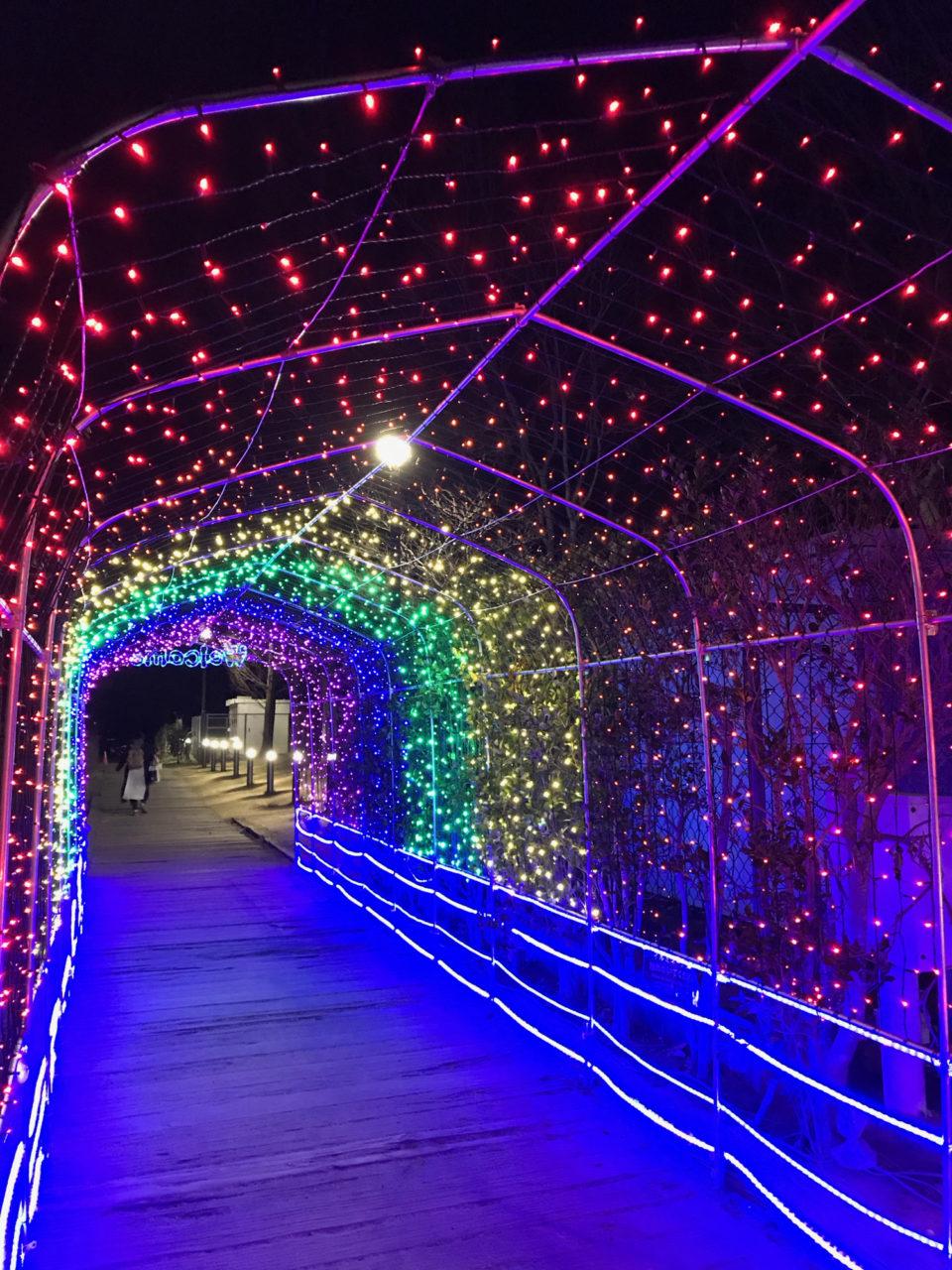 イルミネーションのトンネル