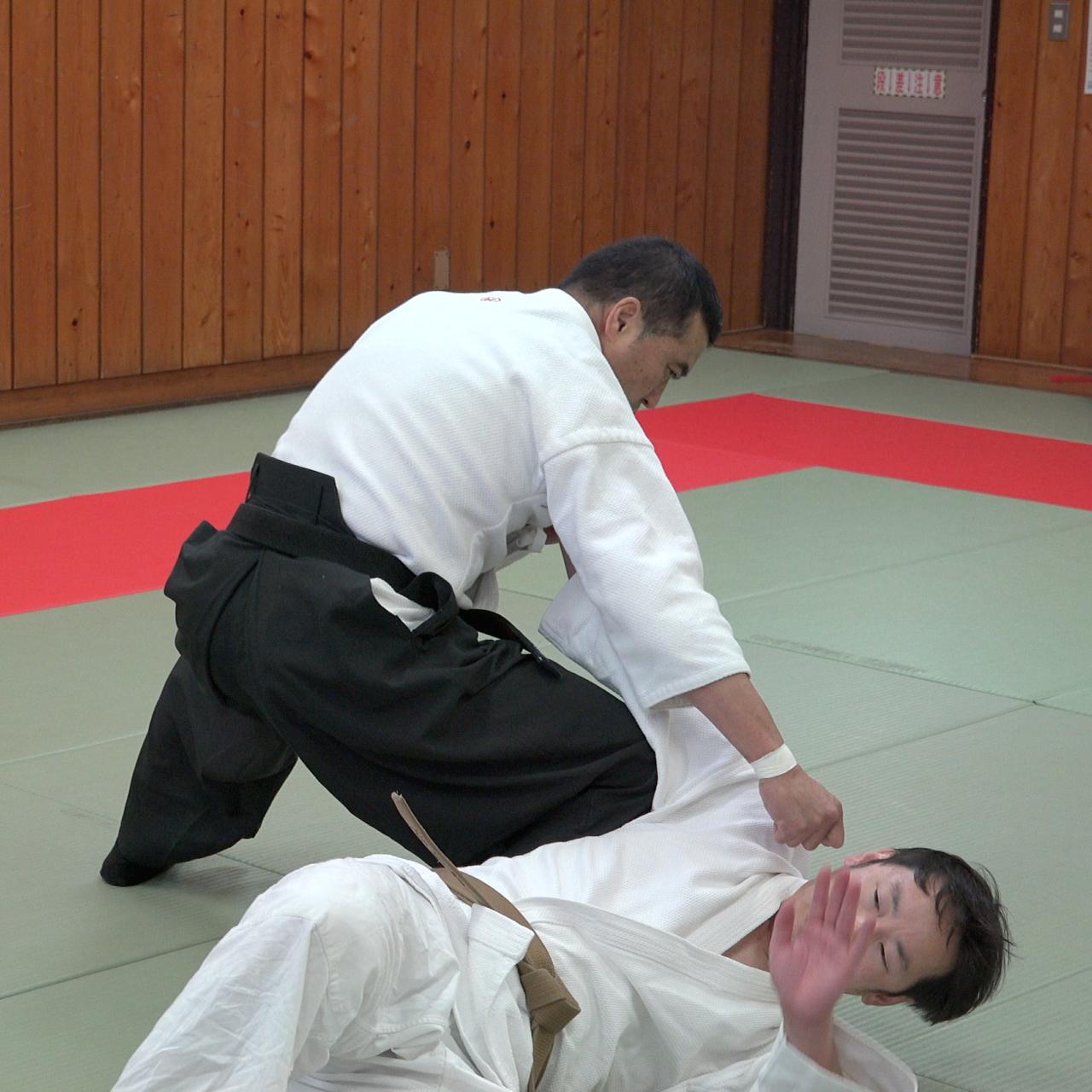 実践的な柔術