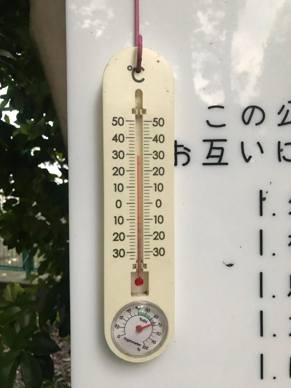温度は30°Cくらい