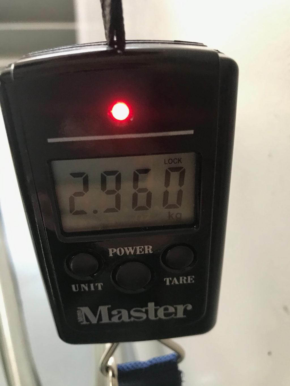 二号機の重量