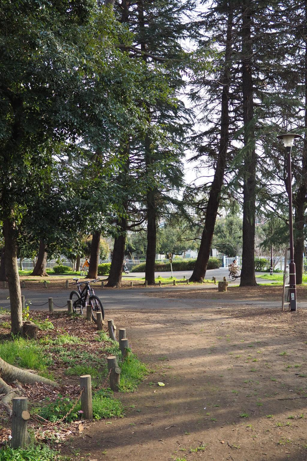 野鳥の広場