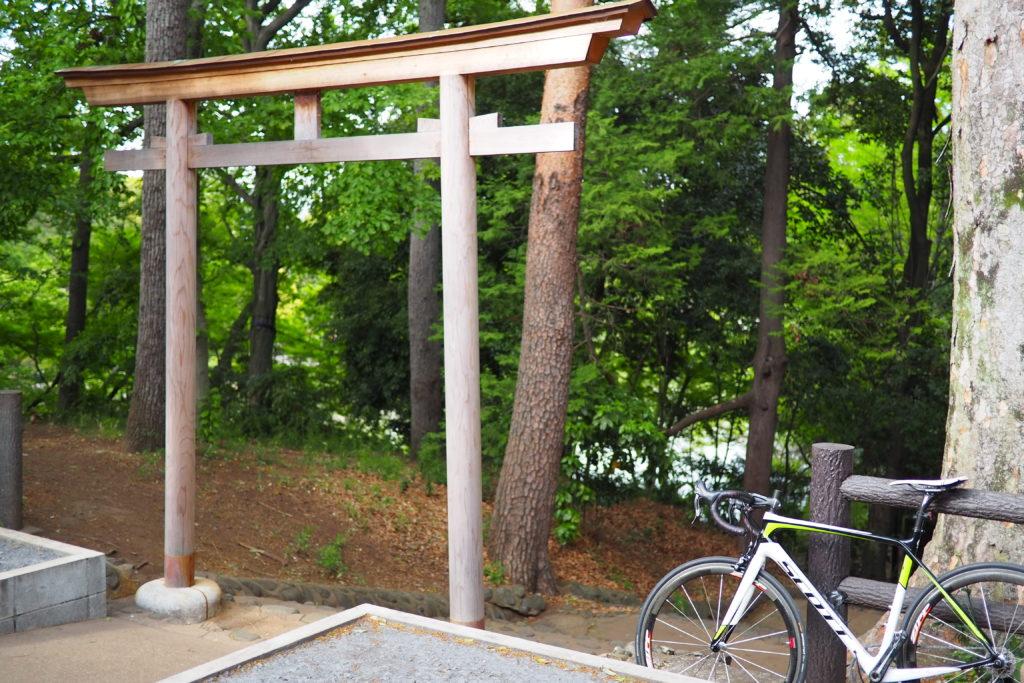 善福寺公園上ノ池側