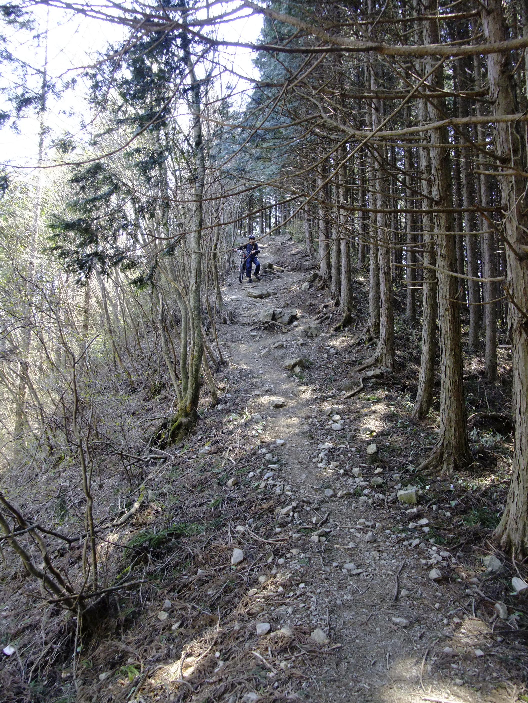登りの途中で出会った最初の下り。Tさんは乗ったまま突っ切りましたが…。