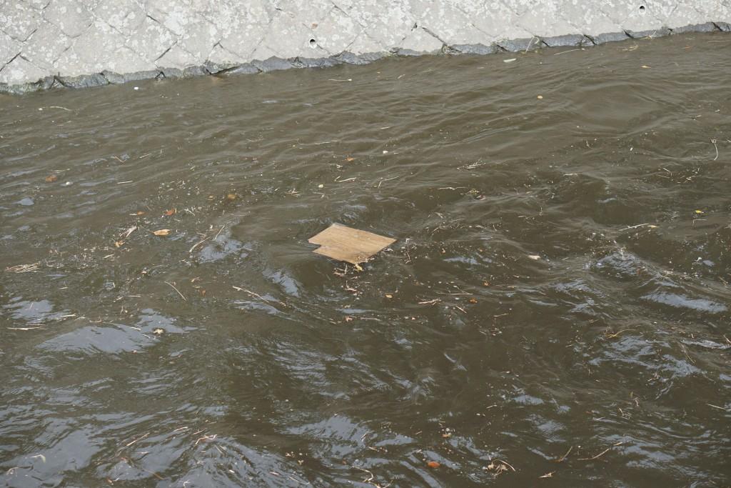 川の上流は大雨の様子