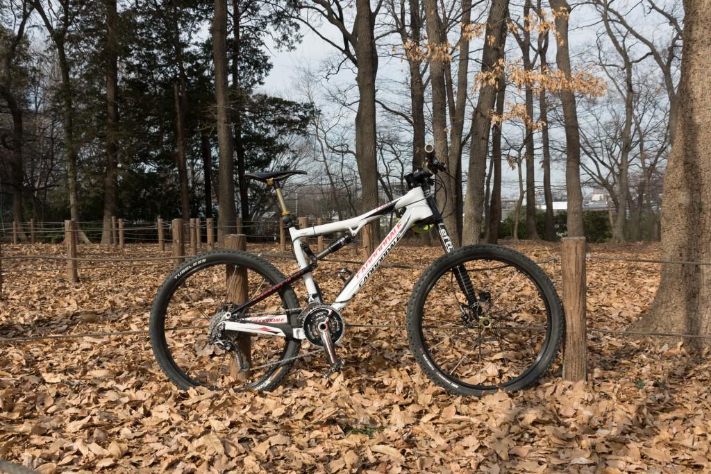 Cannondale Rize 1 Carbon 2009