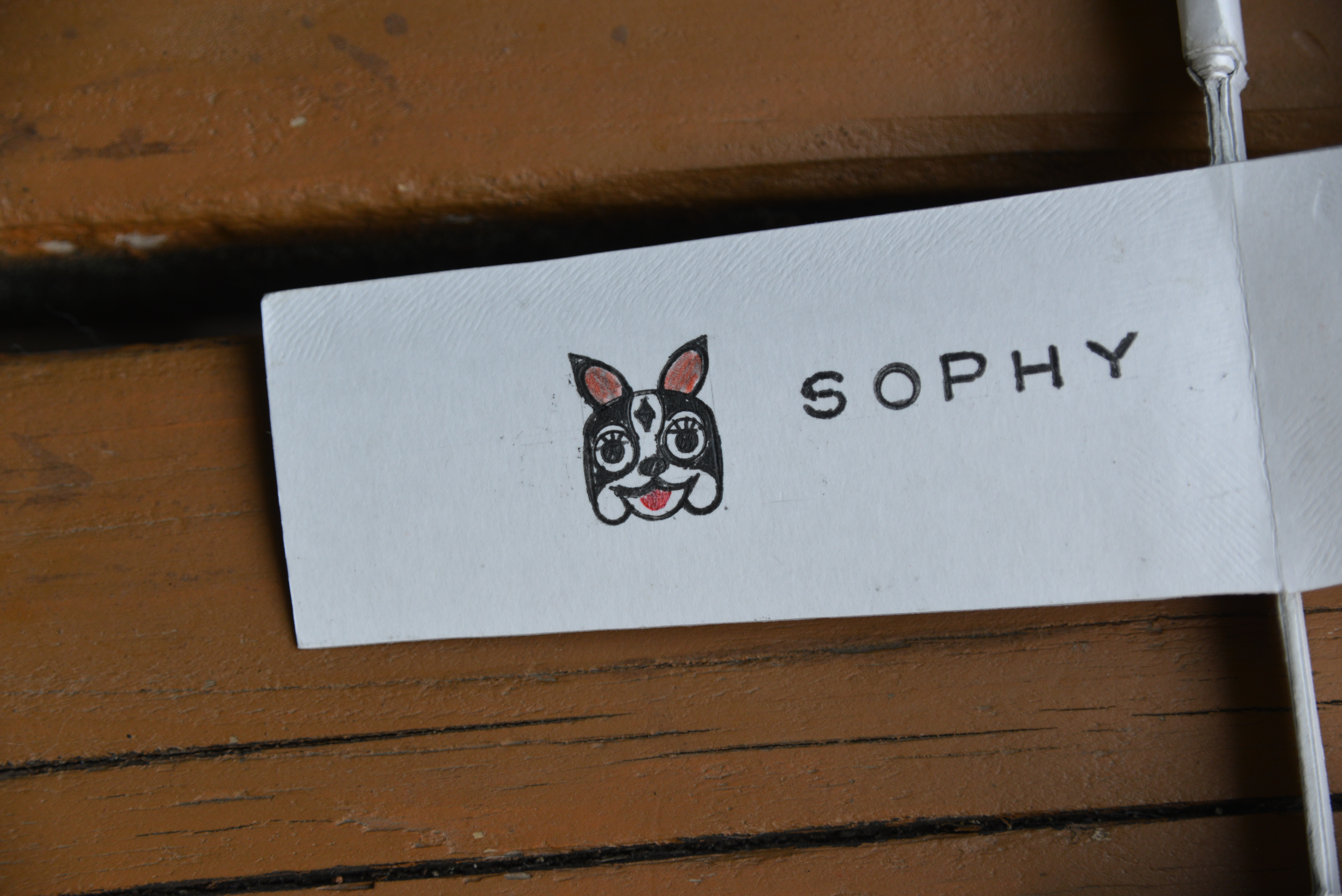 ソフィー号はGemini-Sさんが持って帰られました